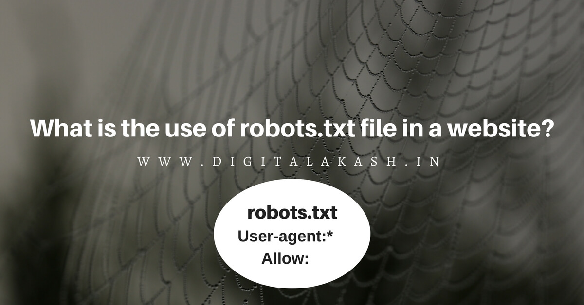 use of robots.txt file