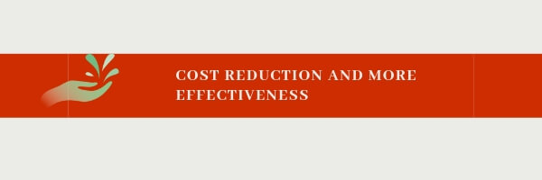 cost reduction and effectivess